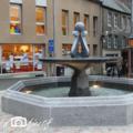 Une magnifique fontaine à avranches...