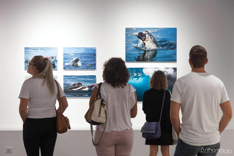 19 Musée mer marine Bordeaux Fradin Anthony Rojo-40