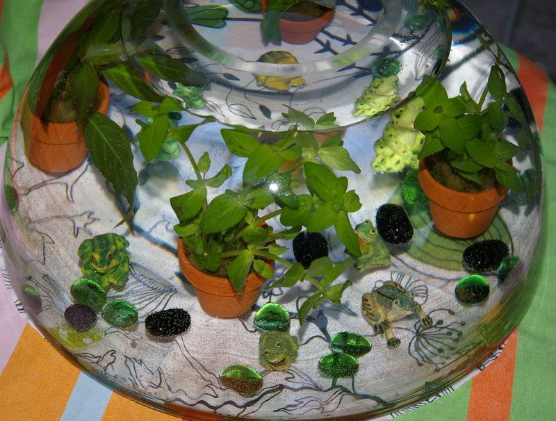 plante aquatique ikea vase