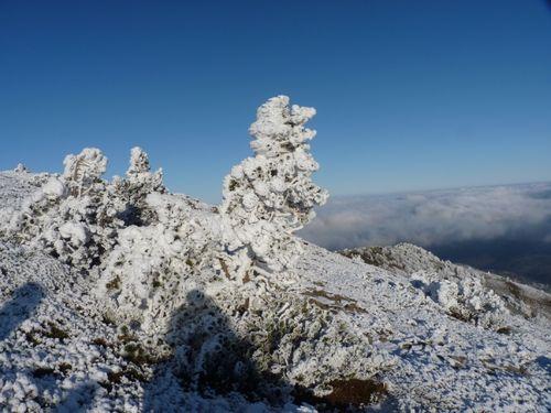 2009 12 14 Depuis le sommet du Mont Mézenc dans une ambiance hivernal