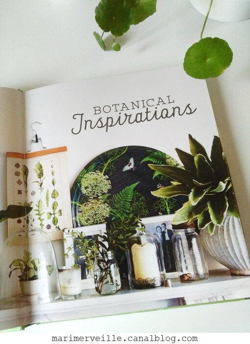 Botanical style - selina Lake - blog marimerveille3