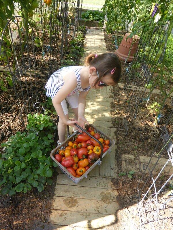 19-tomates (6)