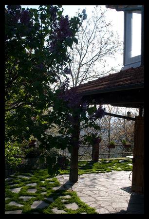 jardin_anna