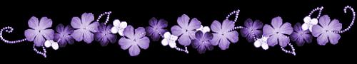 fleurs-violettes