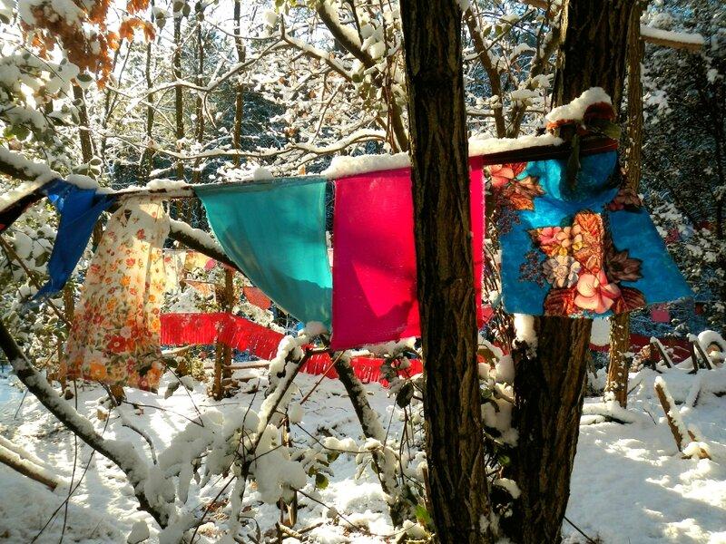 5 fanions dans les bois yurtao