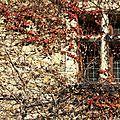 Fenêtres_Pérouges_