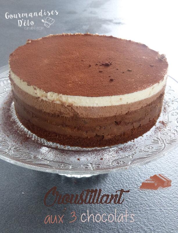Croustillant aux 3 chocolats (14)