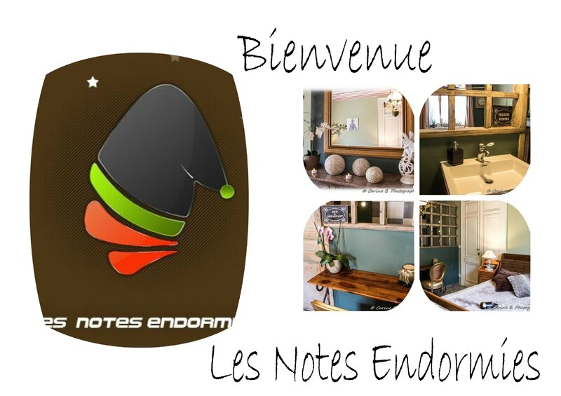 2016 les notes endormies (page 2)