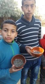 Les 2 Mouad nous montrent les graines