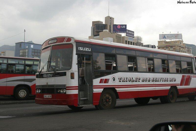 Bus Mauricien