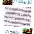 Madame marguerite voyante aix en provence