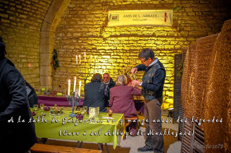 Cave à sel des moines bénédictin de l'abbaye de Maillezais (4)