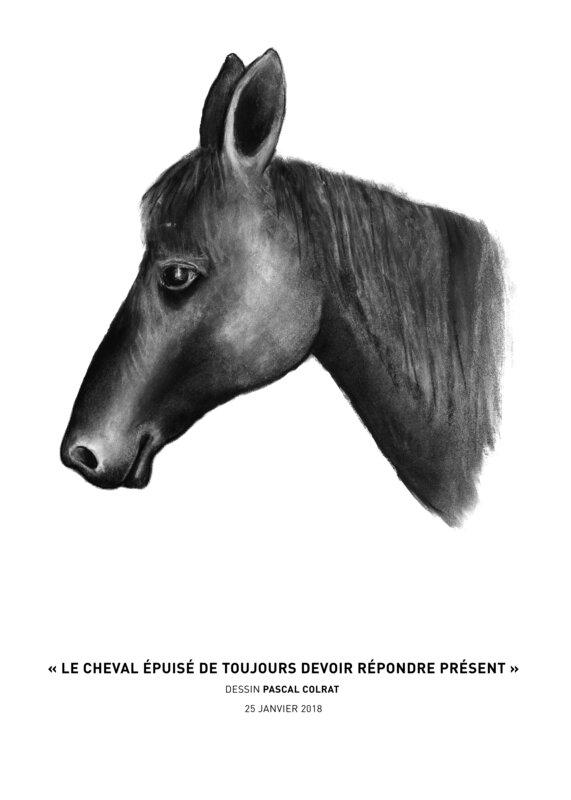 __le_cheval_e_puise__de_toujours_devoir_re_pondre_pre_sent__