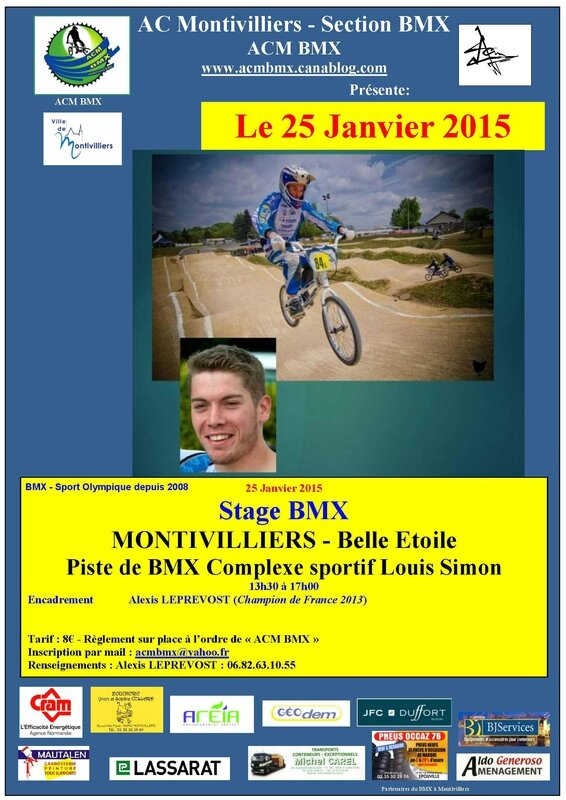 Affiche Stage Alexis Morgan 2015-01-25