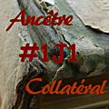 #1j1ancetre - #1j1collateral - 19 juillet