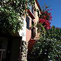 Collioure15