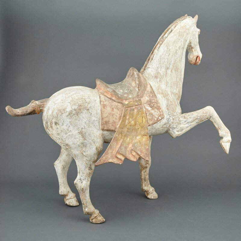 Chinese Painted Pottery Figure of a Prancing Horse, Tang Dynasty3