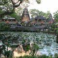 Le bassin à Lotus à Ubud