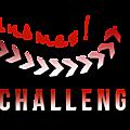 Le challenge du binôme {3}