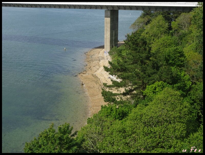 ballade 15 mai pont et plage (3)