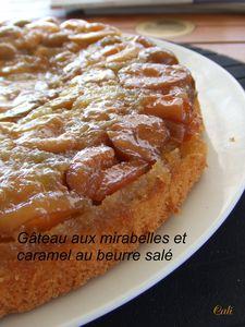 g_teau_aux_mirabelles_010