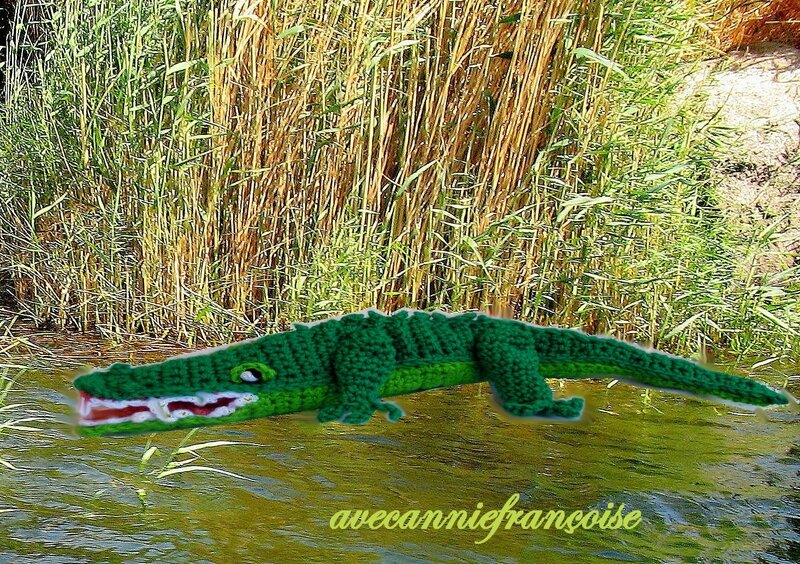 croco sur les bords du nil3