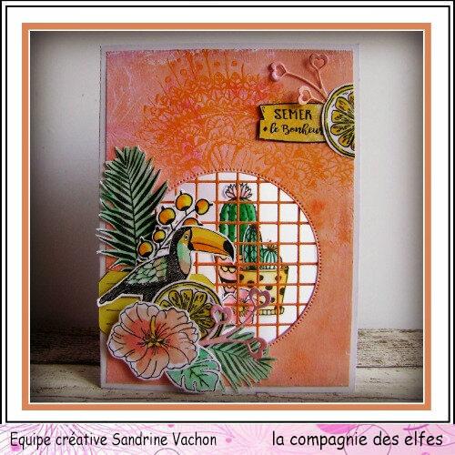 Sandrine VACHON DT LCDE 1er août (1)