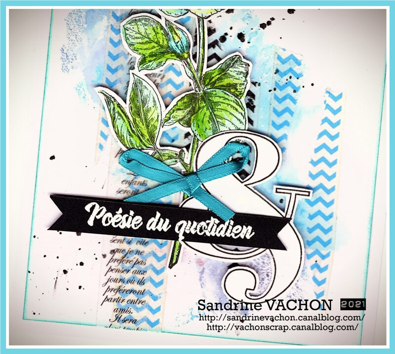 Sandrine VACHON 679 DT PCC (3)