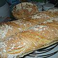 Baguettes et pain maison rapide et sans map