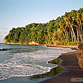 MAR97_24-anse-couleuvre