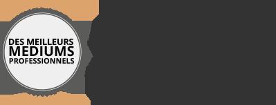 ob_fec4d0_logo