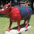 Vache Spiderman