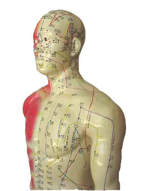 dna-acupuncture