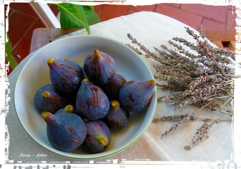 figues 6
