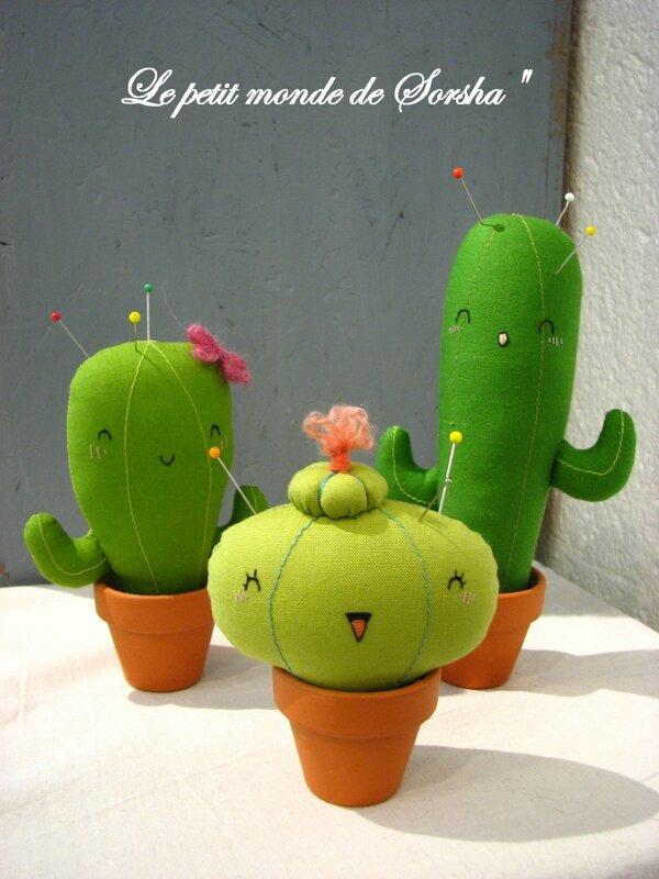 cactus_1_1