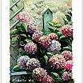 french garden oil color painting hydrangeas valerie albertosi hortensias romantique