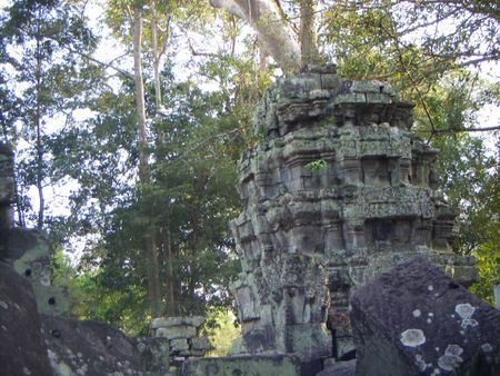 site d'angkor_ta prohm_25