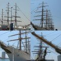 The tall ships a toulon