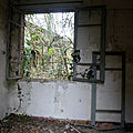 Ambiance ferme chateau abandonné_7898