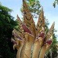 thailande 2004 n2 domi& maman 001