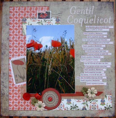 gentil_coquelicot