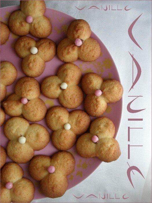 biscuits presse vanille 1