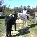 18 AVRIL 2010 FETE DU CHEVAL MONCLAR 002