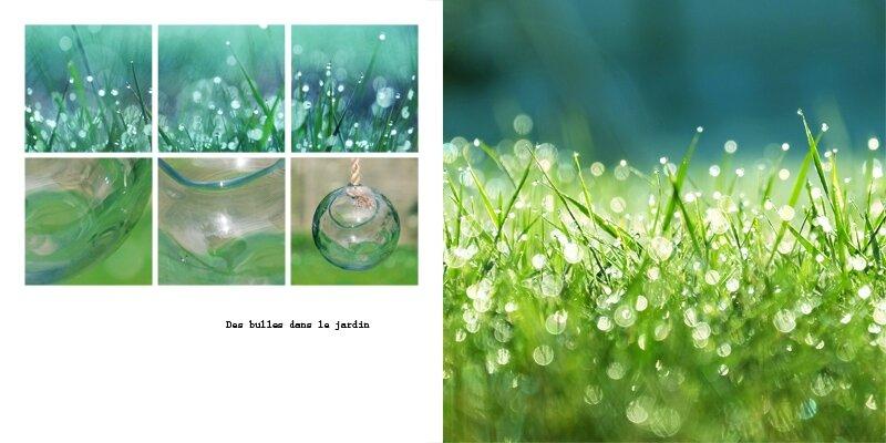 16-02 des bulles dans le jardin