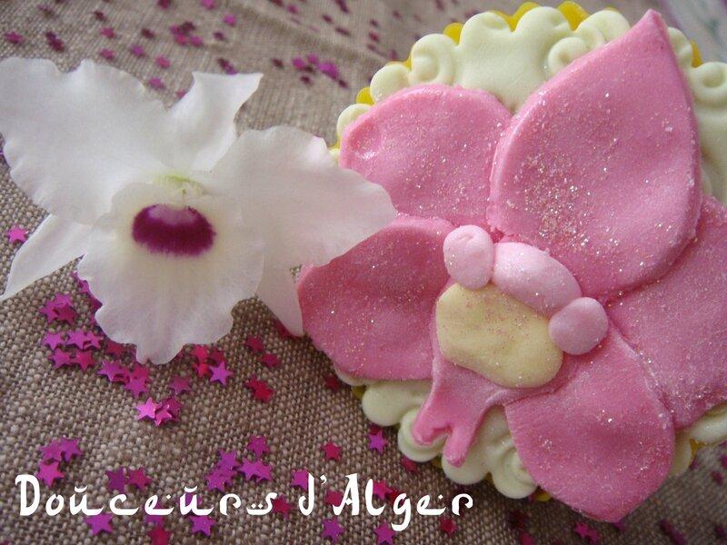 orchidée tarte