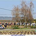 Vignes 2012_0318