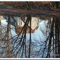 Reflet au parc l'orée des bois laval