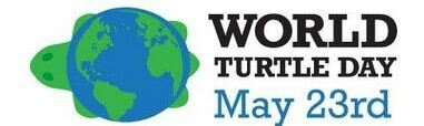 LOGO WORLD TURTLE DAY
