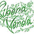 Liste de nos semences de légumes de fleurs à adopter