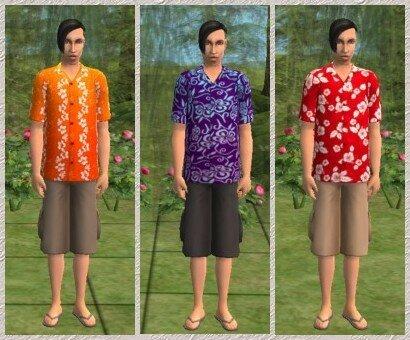 3_tenues_homme_hawaienne